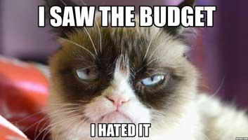 grumpy cat budget meme