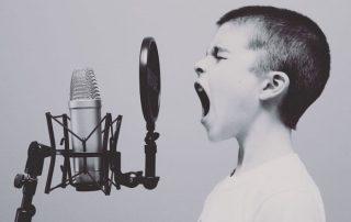 Voiceovers.com Reviews. New P2P Site.